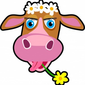 cartoon-cow-clipart