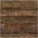 Textur bark loop
